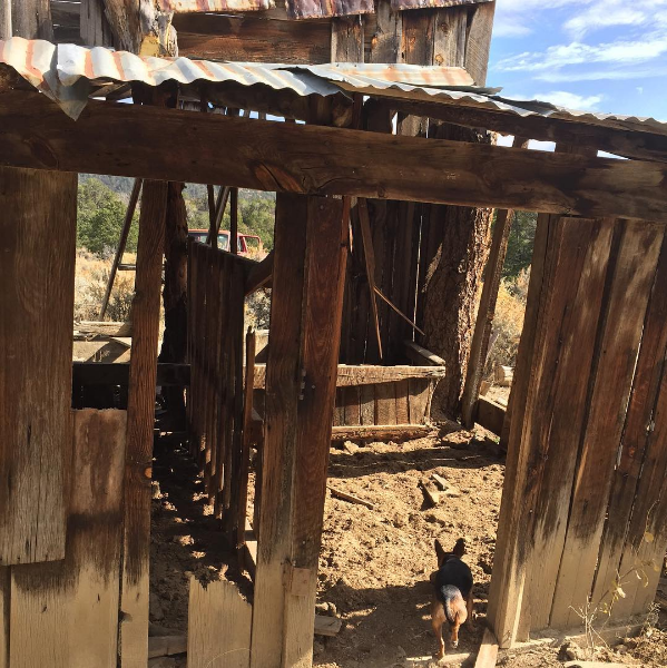 dictionary of new mexico and southern colorado spanish sahalee off grid