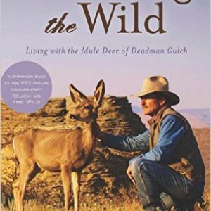 living with the mule deer sahalee off grid